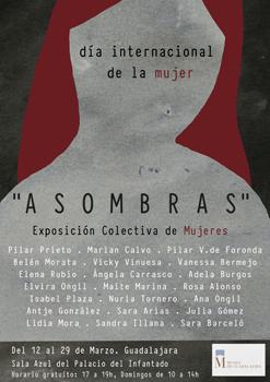 """La Sala Azul del Museo Provincial de Guadalajara acoge la exposición """"Asombras"""""""