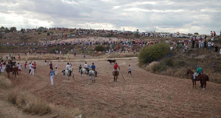 Abaten al toro que se escapó el domingo del Encierro de Brihuega