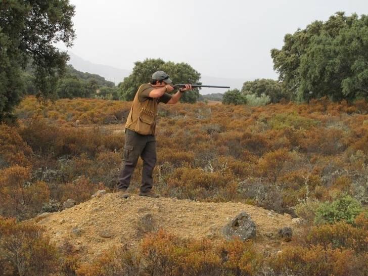 Hay demasiados animales de caza mayor en la Comarca Molinesa