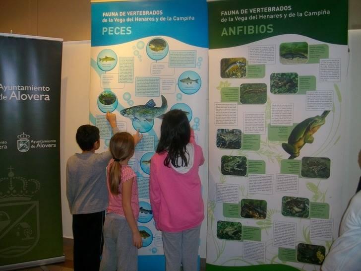 La sala de exposiciones de Alovera acoge la exposición de Fauna del Río Henares y La Campiña