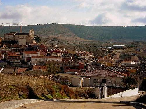 """El Ayuntamiento de Tórtola niega """"rotundamente"""" que haya dado autorización para matar perros vagabundos"""