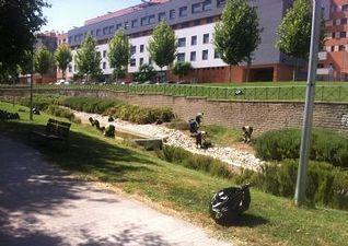 El Ayuntamiento de Guadalajara introducirá importantes mejoras en el mantenimiento de los parques y zonas verdes