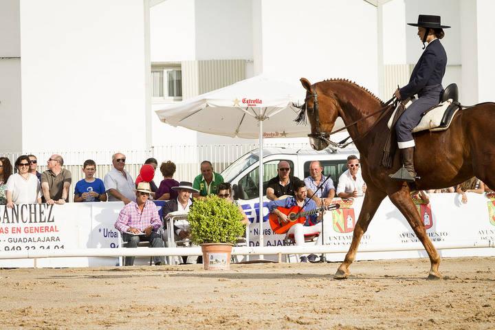 Ecualtur Yunquera 2016 acogerá el I Concurso Nacional de Doma Vaquera