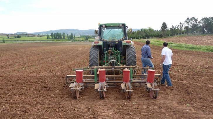 """Merino: """"El Gobierno de Page hace el ridículo en Bruselas para engañar al sector agrario"""""""