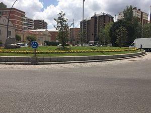 25.646 flores de primavera adornan ya diferentes espacios de la ciudad