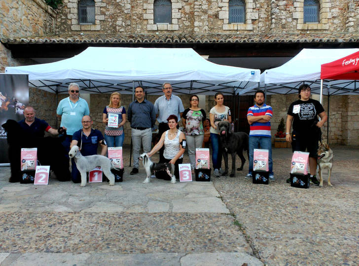 Celebrado el I Concurso Nacional Canino de Fuentenovilla