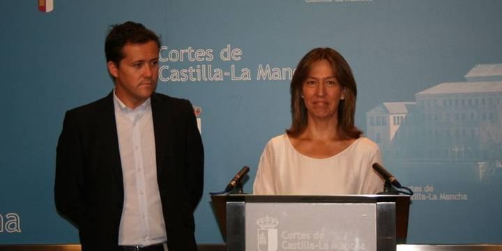 """Guarinos no entiende que en la Comisión del incendio de Seseña haya un diputado socialista """"que votó en contra de la Comisión"""""""