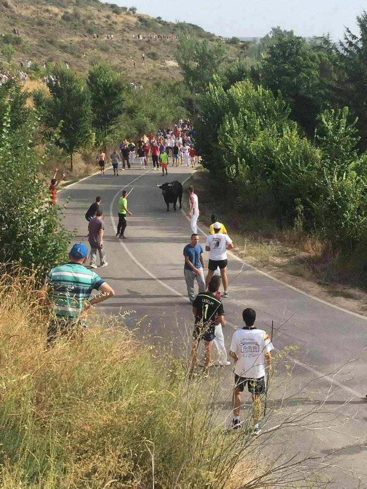 Dos heridos por asta de toro y decenas personas atendidas en el tradicional encierro de Brihuega