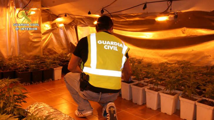 Detienen a cuatro personas en Cabanillas del Campo por cultivar marihuana