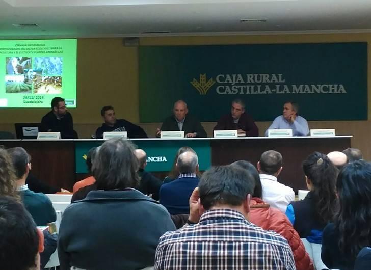 Apicultura y aromáticas, una opción de futuro para los agricultores