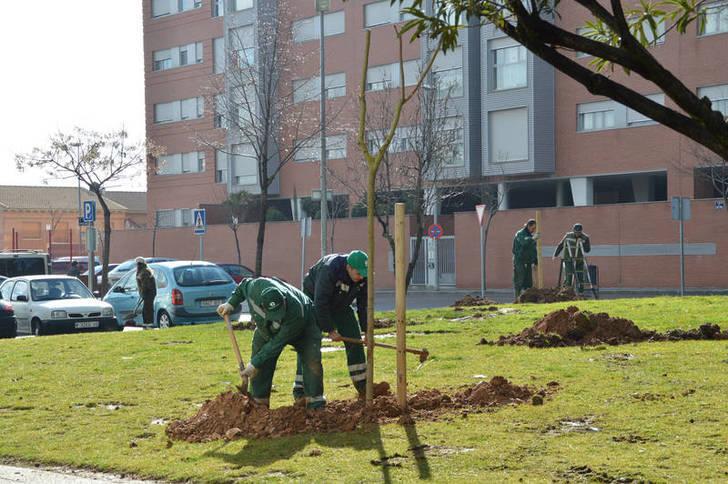 Este sábado, primera plantación del proyecto 'En Azuqueca, nace un bebé, nace un árbol'