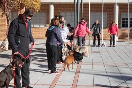 Gran respuesta popular al Taller de Adiestramiento Canino en Cabanillas