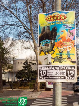 """Ecologistas en Acción """"alerta"""" de la llegada a Guadalajara de un circo con animales"""