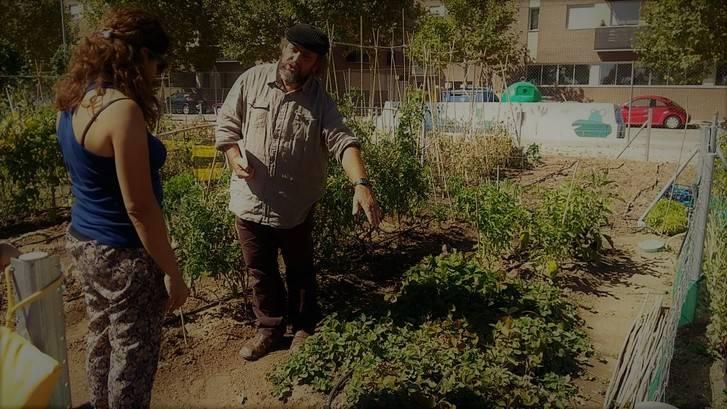 Una jornada técnica sobre sistemas de cultivo da inicio a la temporada de huertos urbanos en Valdeluz
