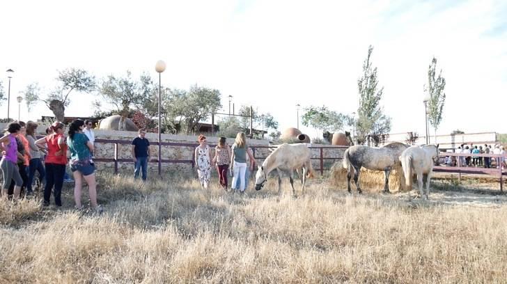 Más de 24 mujeres participan en las dos primeras sesiones grupales del programa Impulsa Mujer Rural de la Diputación