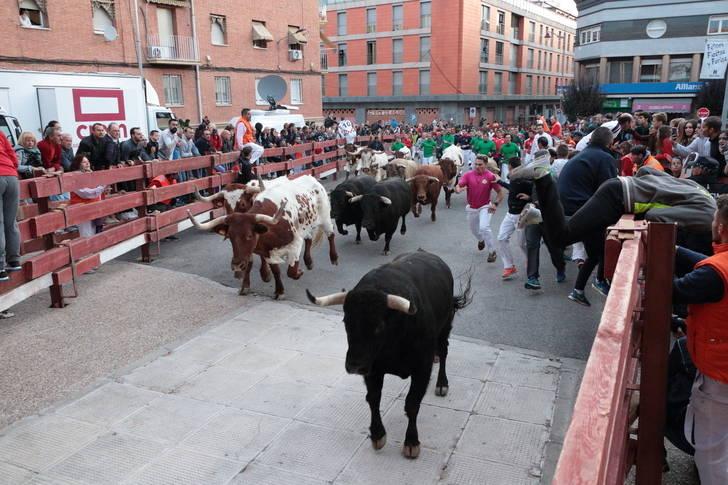 Multitudinario Encierro este sábado de Ferias en Guadalajara : 1 corneado por asta de toro