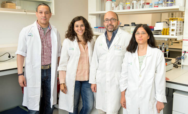 Gran descubrimiento científico en Castilla-La Mancha para luchar contra la esclerosis múltiple