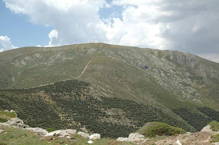 Fallece un miembro del Club Alcarreño de Montaña mientras subía el cerro Tempraniego