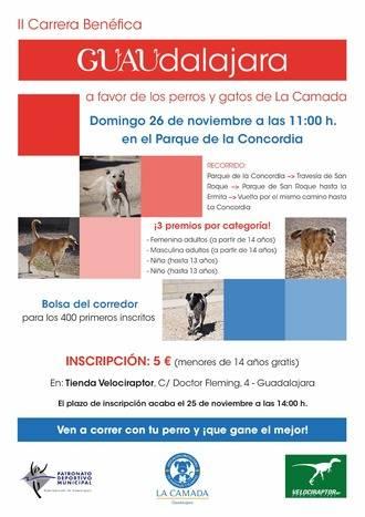 La Camada organiza su II Carrera Benéfica para ayudar a sus perros y gatos