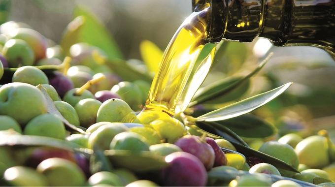 Máxima preocupación por la falta de lluvias en el sector del aceite de oliva de Castilla-La Mancha