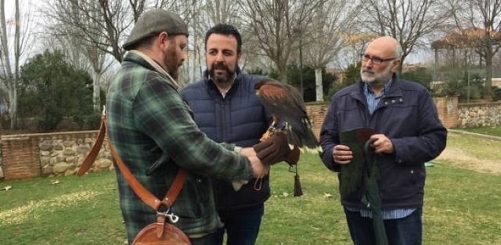 El ayuntamiento de Azuqueca empieza a utilizar aves de cetrería para controlar la población de palomas