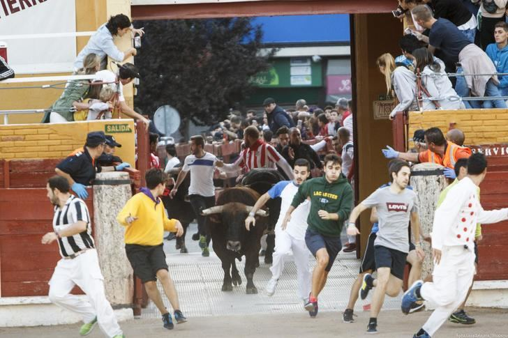 El Ayuntamiento de Guadalajara convoca un concurso para elegir el cartel anunciador de las Ferias y Fiestas 2019