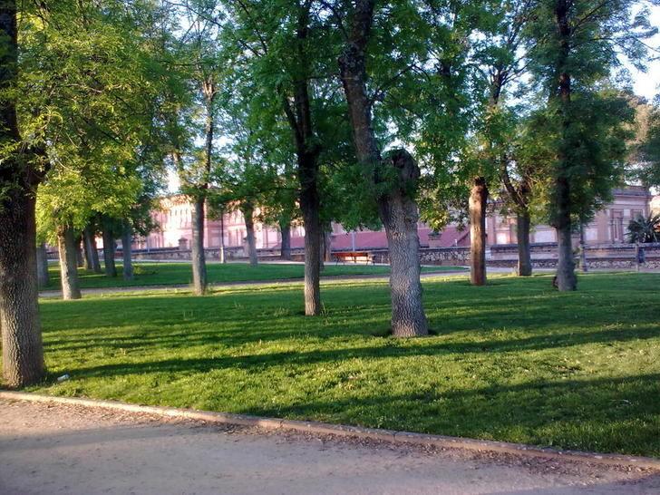 Detenido por agredir sexualmente a una niña de 9 años en las inmediaciones del Parque de la Fuente de la Niña de Guadalajara