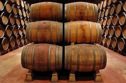 """Asaja CLM alerta de que tiene """"sospechas"""" de fraude en el sector vitivinícola en todas las provincias de C-LM, salvo Guadalajara, y pide más control, sanciones y cierre de bodegas"""