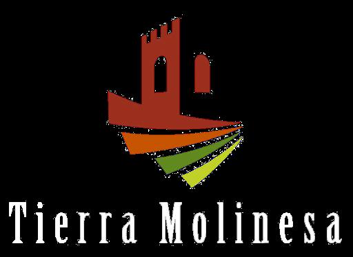 Tierra Molinesa falla los VIII Premios Emprendedores Molineses 2020