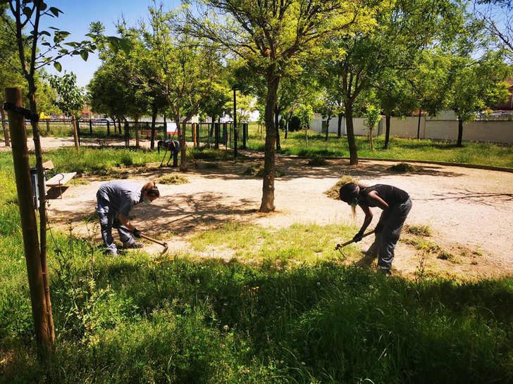 El Ayuntamiento de Azuqueca contratará a 31 personas desempleadas y en riesgo de exclusión social en la segunda fase del Plan de Empleo 2019/2020
