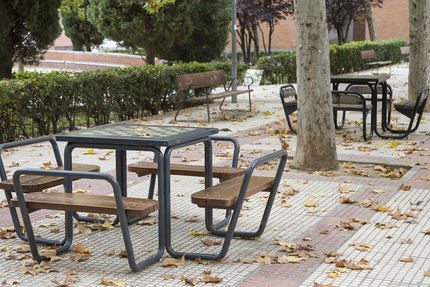El Ayuntamiento de Guadalajara está llevando a cabo el Plan Especial de Recogida de Hojas