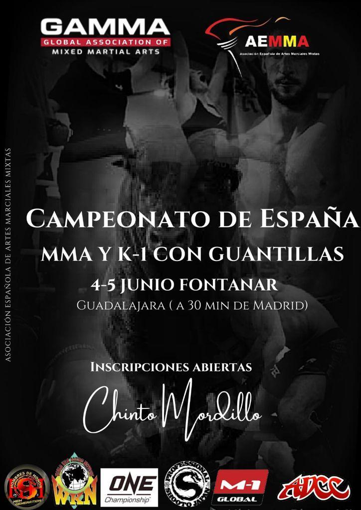 Campeonato de España MMA y K-1 con guantillas