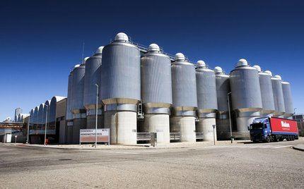 Mahou compra el 70% de la cerveza artesana Brutus que se producirá en Guadalajara