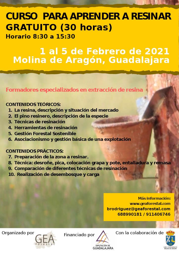 Molina de Aragón acogerá del 1 al 5 de febrero un curso de resineros financiado por la Diputación