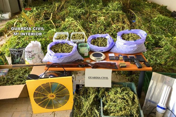La Guardia Civil detiene a una persona en Argamasilla de Alba por cultivo y tráfico de marihuana