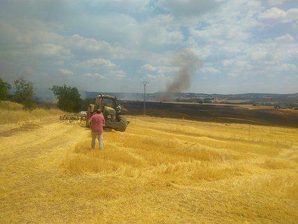 Controlado el incendio sucedido en Masegoso de Tajuña