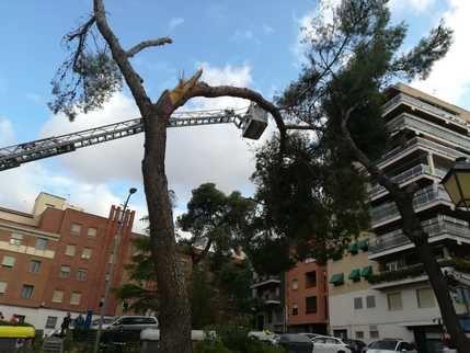 Las cinco provincias de Castilla-La Mancha están en aviso por viento este lunes