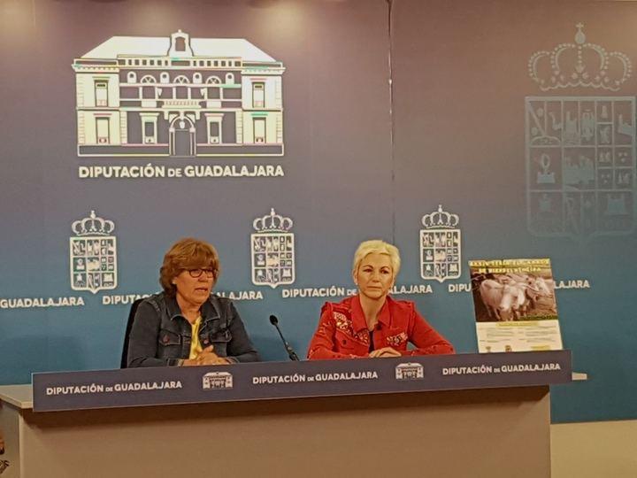 Hiendelaencina celebrará el sábado 16 de junio la XXXIV Feria del Ganado con el apoyo de la Diputación
