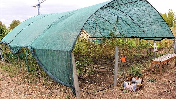 Hasta el 20 de enero se pueden presentar las solicitudes para optar a los huertos urbanos de Yebes y Valdeluz