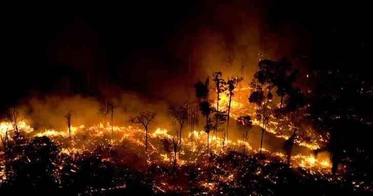 Se cumple un año desde el gran fuego que asoló la Amazonía