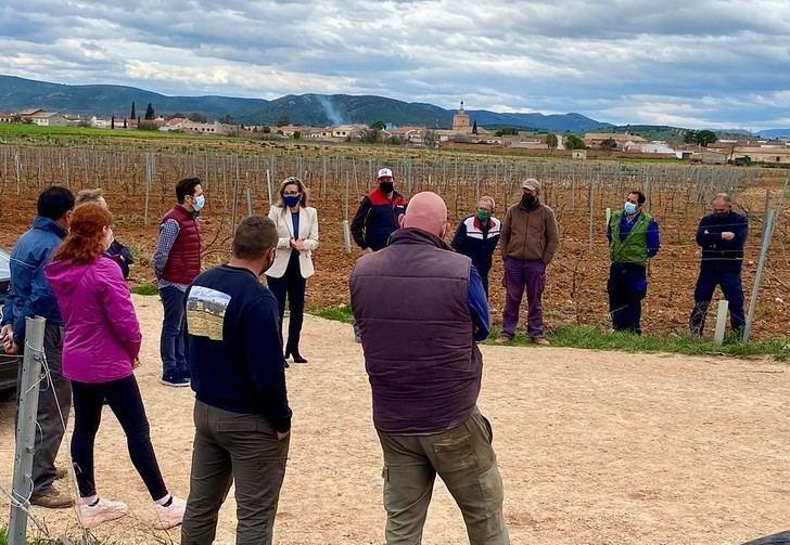 El PP-CLM solicita al Gobierno de Page ayudas transitorias para el sector del vino, al ser excluido de los fondos europeos