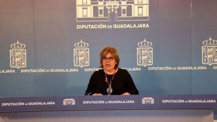 """La Diputación de Guadalajara lamenta el """"desprecio"""" de Page hacia la Institución y los alcaldes de la zona del incendio de Riba de Saelices"""