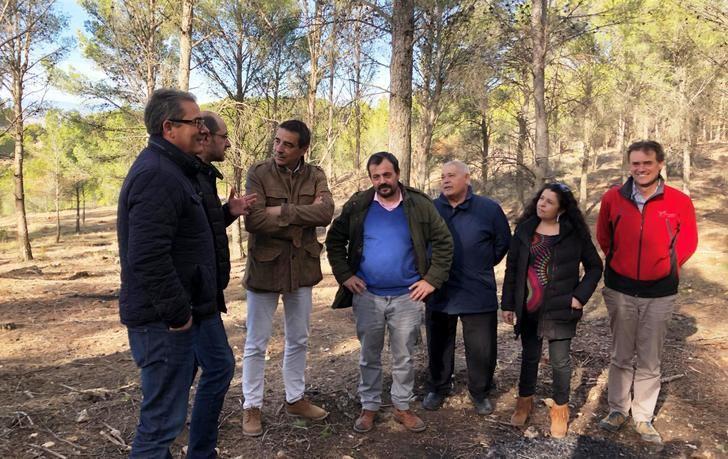 En la provincia de Guadalajara se realizan trabajos silvícolas preventivos durante el invierno en una superficie de entre las 1.500 y 2.000 hectáreas cada año