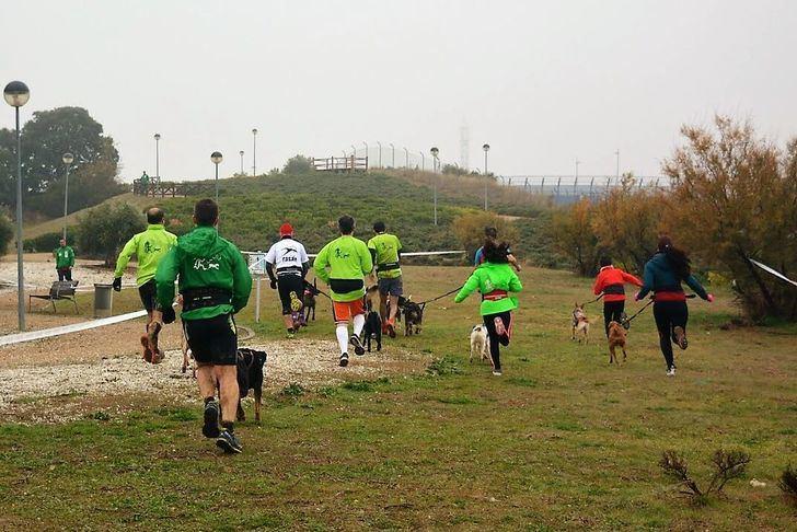 El Mushing de este domingo en Valdeluz es puntuable para la Copa de Madrid y el Circuito Provincial de Guadalajara