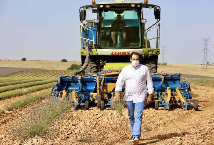"""Paco Nuñez visita los campos de lavanda en Almadrones y considera """"vital"""" que el Gobierno regional de Page ponga en marcha """"líneas de ayuda directa"""" para el sector del campo"""