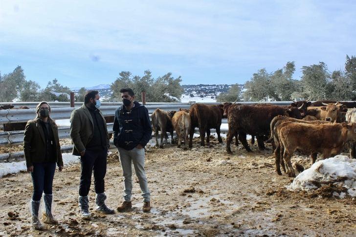 Núñez muestra su apoyo a los ganaderos de Castilla-La Mancha tras los problemas que les ha causado el temporal de nieve.