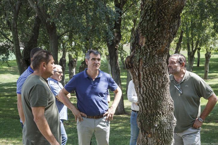 Abierto el parque de la Fuente de la Niña de Guadalajara