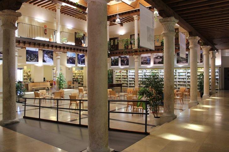 Actividades de la Biblioteca de Guadalajara en este mes de febrero