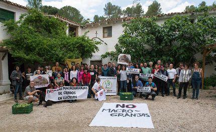 La Plataforma Stop Macrogranjas de la Comarca de Molina une fuerzas con más de 30 plataformas vecinales y organizaciones, contra la ganadería industrial