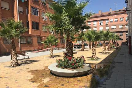 Trabajos de poda y plantaciones ornamentales en la plaza de San Pedro en Azuqueca